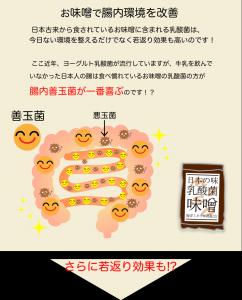 お味噌LP2