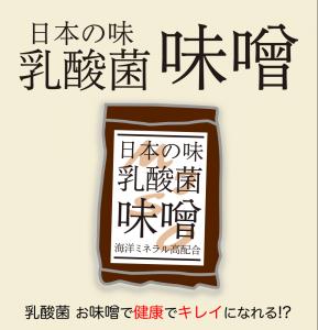 お味噌LP1